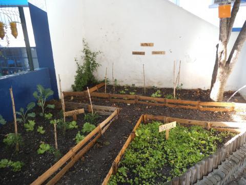 O novo espaço da nossa horta!