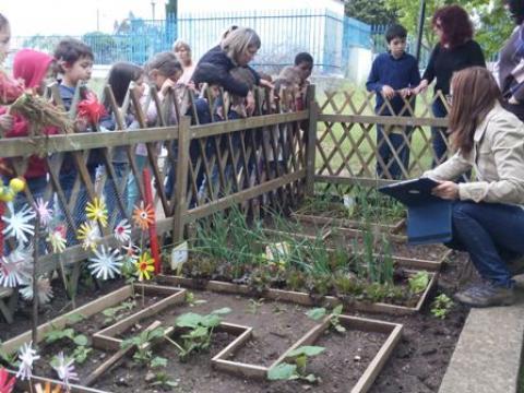Para aprender, a horta fomos conhecer!
