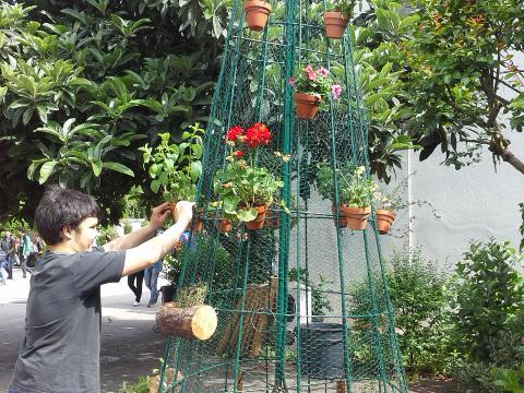 Vamos continuar a decorar, para a nossa árvore aumentar!