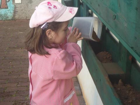 Atividades de preparação da horta - alunos da pré.