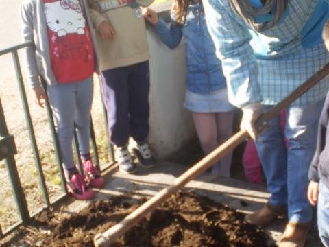 Preparação da terra para plantação.