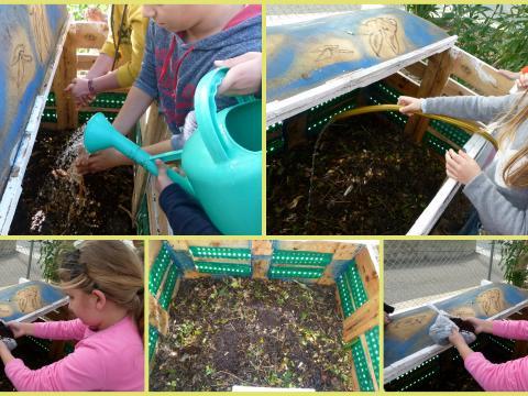 Compostagem com o fim único- a adubação da horta com o composto.