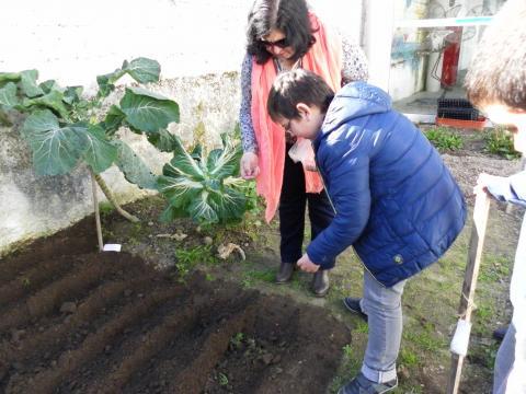 Professora explica como se colocam as sementes na terra.