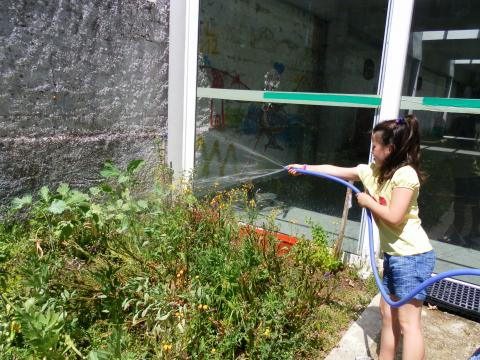 Todos os alunos gostam de cuidar da horta.