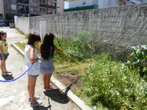 A rega da horta feita pelos alunos. Esta responsabilidade é repartida pelas  turmas deste estabelecimento de ensino conforme calendário  feito no início do ano.
