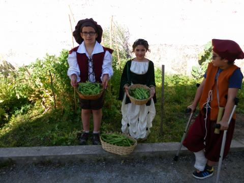 As favas e as ervilhas estão prontas para vender na Feira Quinhentista (Plano Anual de Atividades da escola).
