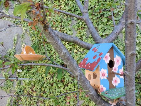 Comedouro  e casinha para pássaros.