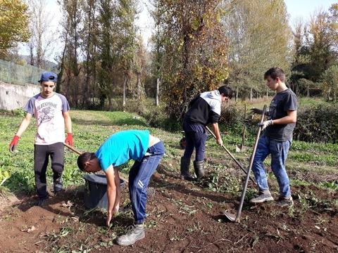 Setembro – preparação do solo para as primeiras culturas: eliminação de ervas, cava e fertilização do solo com composto.