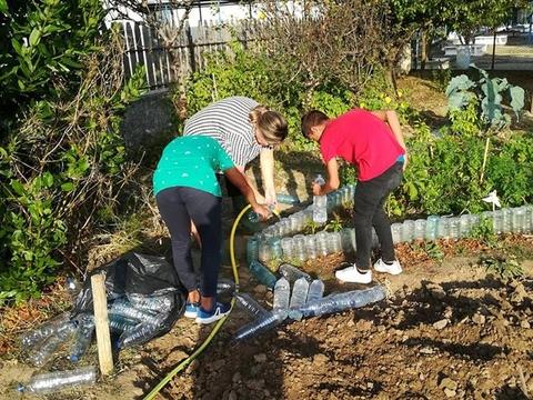Colocação de garrafas de 1,5 L de água para delimitar os canteiros.