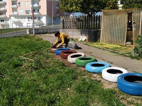 Plantação de tomilho, manjericão, salsa, coentros, chalotas, alfaces, espinafres e flores em pneus velhos pintados.