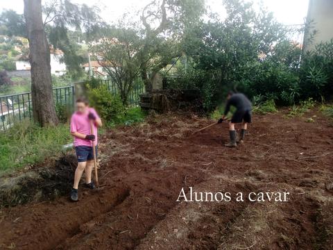 Alunos a cavar. Os alunos cavam com o intuito de soltar a terra.