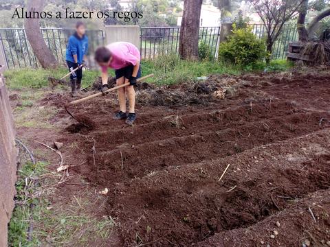 Preparação dos regos. Os alunos predispõem os regos para posteriormente colocarem as sementes.