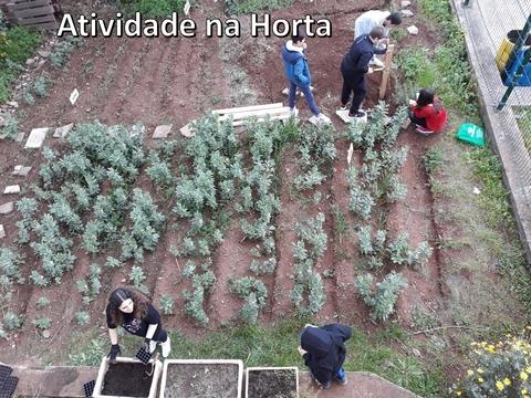 Atividade na Horta