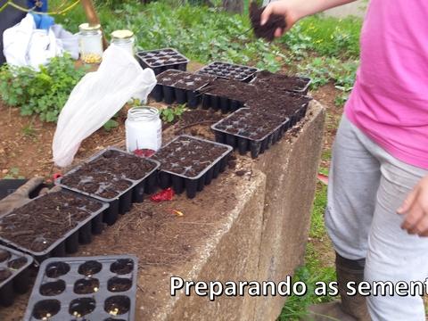 Preparando sementeira