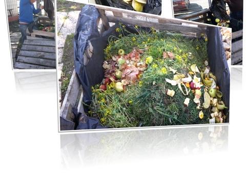 Produção de fertilizante orgânico  recorrendo a resíduos orgânicos vegetais obtidos na escola, por via da: cantina, horta biológica, da máquina de café, cascas de ovos das aves, ...